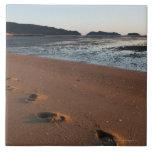 Steps in the sands at sunrise tile