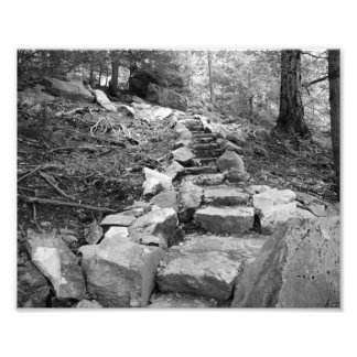 Steps of Age Photo Print