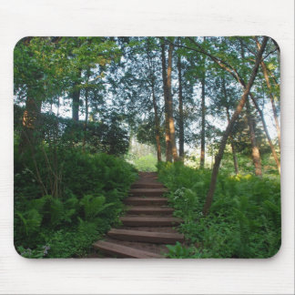Steps on a Nature Walk Mouse Mats