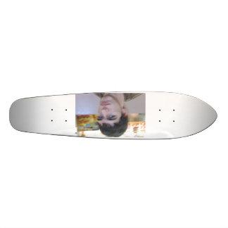 Stevie C 411 Skate Board