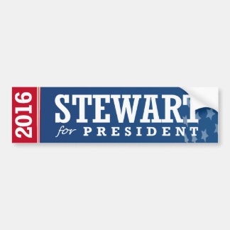 STEWART FOR PRESIDENT 2016 BUMPER STICKER