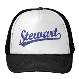 Stewart script logo in blue cap