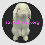 Stick up For Bunnies Classic Round Sticker