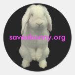Stick up For Bunnies Round Sticker