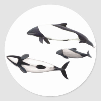 Sticker Dolphin of ovejera Commerson or tonina