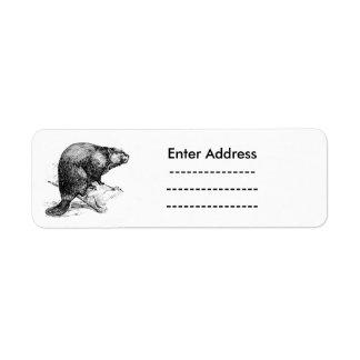 Sticker labels Canada Beaver