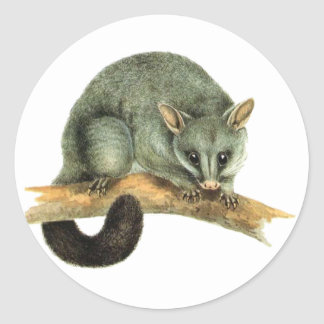 Sticker Sheets - cooroy possum
