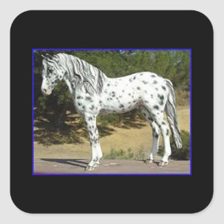 Sticker with a black and white horse