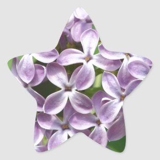 sticker with photo of beautiful purple lilacs