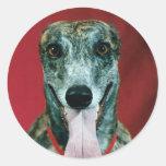STICKERS Greyhound Sticker Brindle dog Lovers