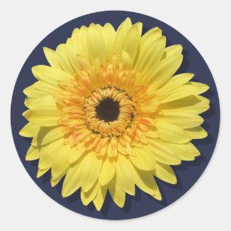 Stickers - Lemorange Lollipop Daisy