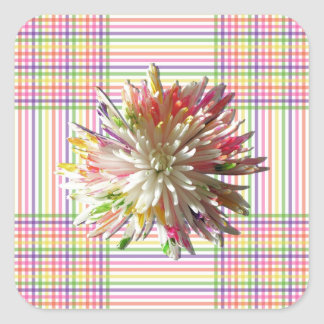 Stickers - Painted Spider Mum on Grid