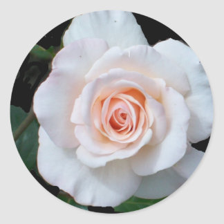 Stickers - Pale Pink Rosebud
