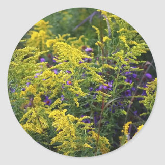 Stickers - Prairie Wildflowers