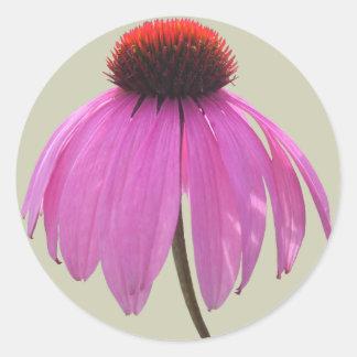 Stickers - Purple Coneflower - Echinacea