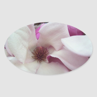 Stickers - Saucer Magnolia Bloom