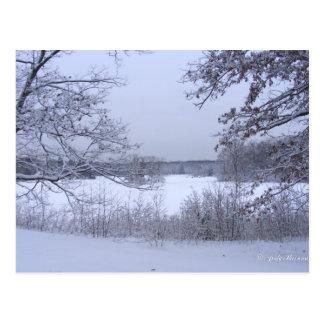 Sticky Snow 127 postcard