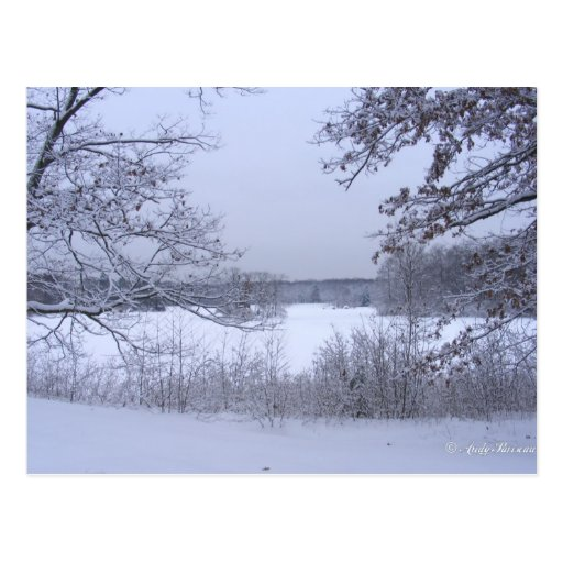 Sticky Snow 127 ~ postcard