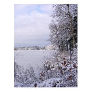 Sticky Snow 18 ~ postcard