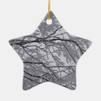 Sticky snow stuck to branches. ceramic star decoration