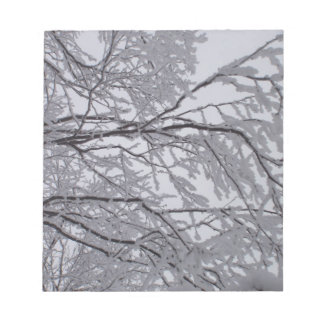 Sticky snow stuck to branches. notepad