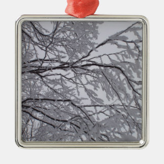 Sticky snow stuck to branches. Silver-Colored square decoration