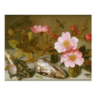 Still life depicting flowers postcard