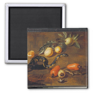 Still Life of Fruits from Surinam and Reptiles Square Magnet