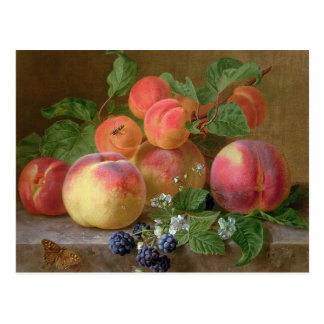 Still Life of Peaches Postcard