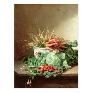 Still Life of Strawberries, Carrots and Cabbage Postcard