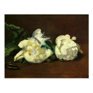Still life, white peonies - Edouard Manet Postcard