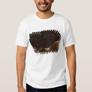 Still Life with a Duck, 1863 Tshirts