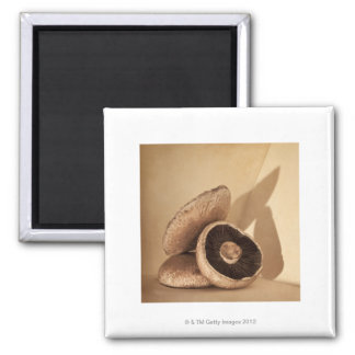 Still life with flat mushrooms and dramatic square magnet