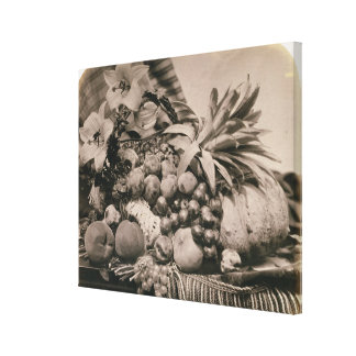 Still Life with Fruit, 1860 (sepia photo) Canvas Print