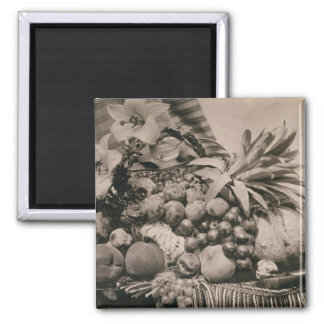 Still Life with Fruit, 1860 (sepia photo) Square Magnet