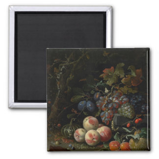Still Life with Fruit, Foliage and Insects, c.1669 Magnet