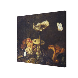 Still Life with Mushrooms and Butterflies Canvas Print