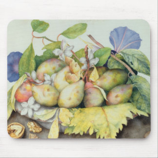 Still life with Plums, Walnuts and Jasmine (w/c on Mouse Pad