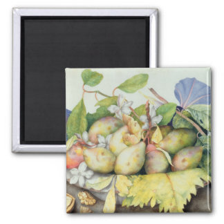 Still life with Plums, Walnuts and Jasmine (w/c on Square Magnet