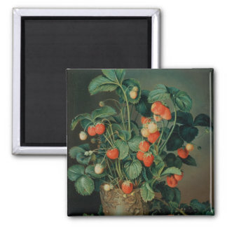 Still life with strawberries square magnet
