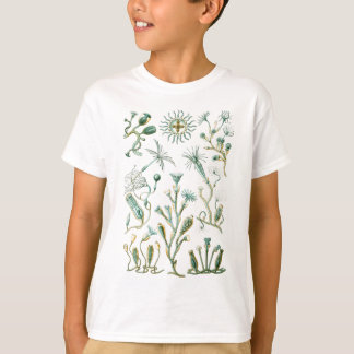 stinging-celled animals T-Shirt