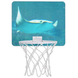 stingray-24.jpg mini basketball hoop