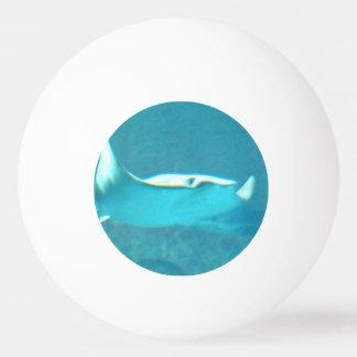 stingray-24.jpg ping pong ball