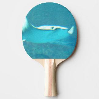 stingray-24.jpg Ping-Pong paddle