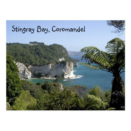 Stingray Bay, Coromandel Postcard