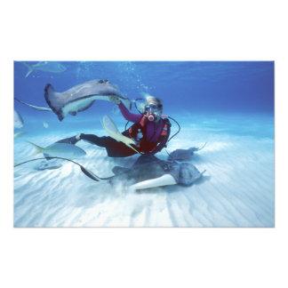 Stingray City, Grand Cayman, Cayman Islands, Photo Print