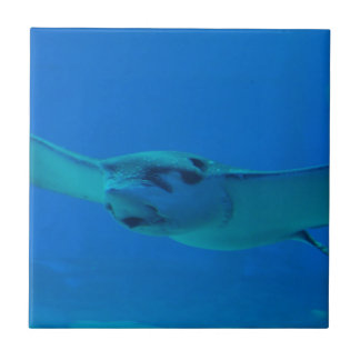 Stingray Swimming Under Water Small Square Tile