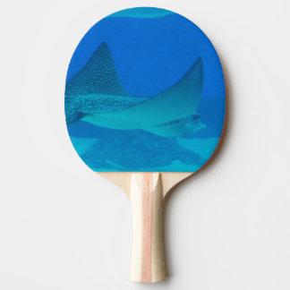 Stingrays Ping-Pong Paddle