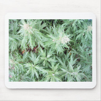 stink weed mouse mat