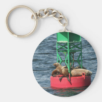 Stinky Dingy Basic Round Button Key Ring